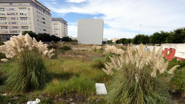 Entre los próximos objetivos de la Junta no está la construcción de viviendas en Matadero.