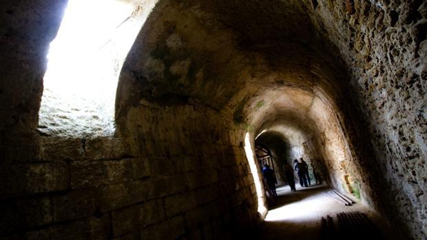 ¿Quieres visitar con guía y gratis el teatro romano, la fábrica de salazones y el Museo de Cádiz?