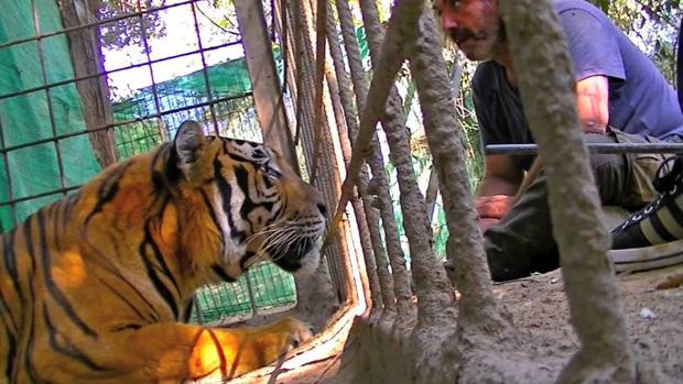 La Junta no ha detectado «ninguna irregularidad» en el zoo de Castellar