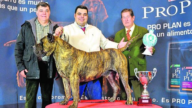 Felipe Llano con su campeón en una exposición internacional de Granada