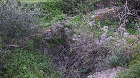 Parte de la villa romana tapada por la vegetación.