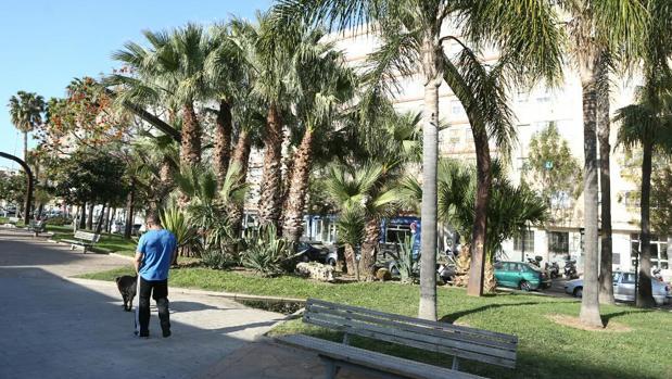 Jardines de los Cinco Continentes, en Cádiz