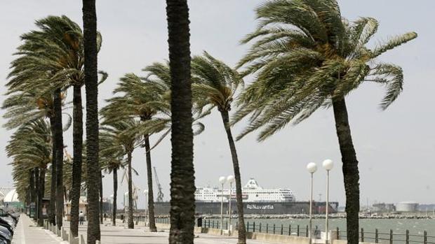 Vientos huracanados en la provincia de Cádiz