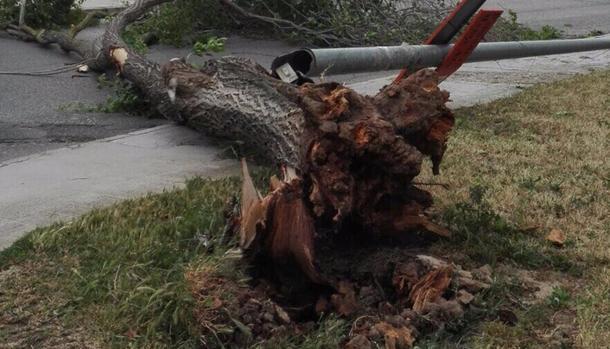 Tres heridos y 400 incidencias en la provincia por el temporal de levante
