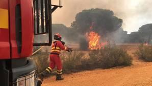 Labores de extinción del incendio de Moguer.