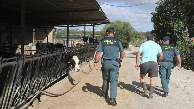 Los ROCA, la patrulla más rural de Cádiz