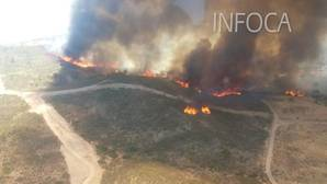 Declarado un importante incendio forestal en El Castillo de las Guardas