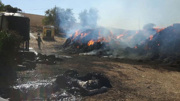 Incendio en la finca Los Cedros