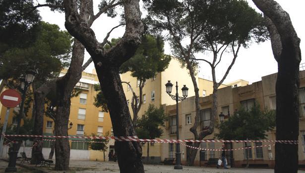 La vivienda donde entraron los supuestos ladrones está ubicada en las proximidades de la Plaza del Árbol