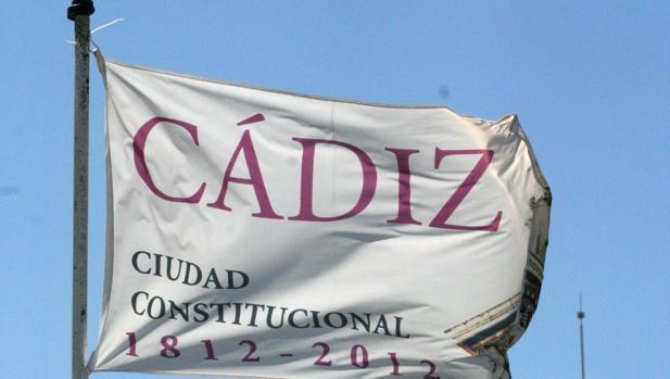 Bandera del Bicentenario.
