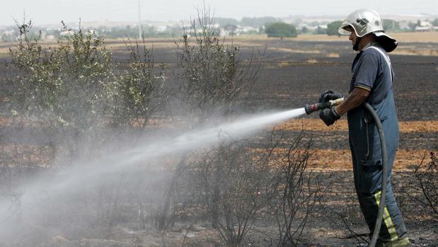 Un Bombero refresca un campo quemado