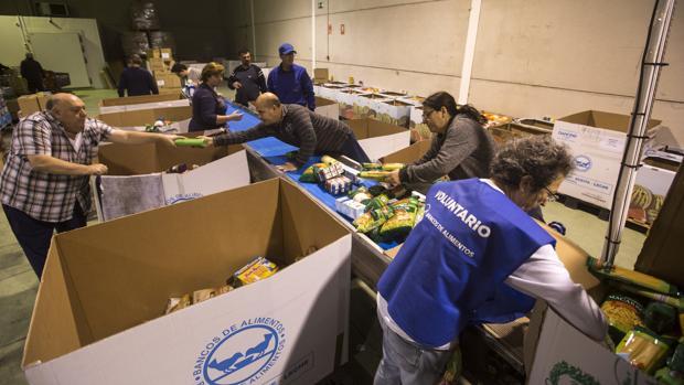 El Banco de Alimentos de Cádiz ha conseguido reunir más de 200.000 kilos de alimentos durante la última Gran Recogida.