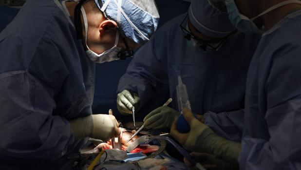 Cirujanos, en plena operación.