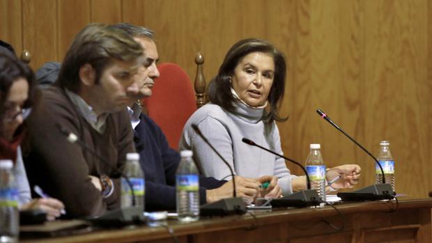 La exalcaldesa de Palomares del Río, Lola Rodríguez, durante la moción de censura de enero