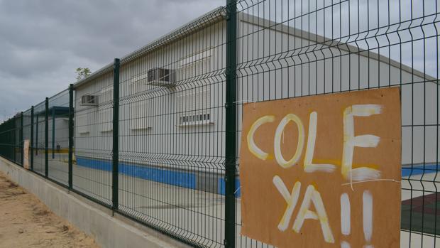 Para el PP, la Junta carece de un plan para acabar con las caracolas en la provincia de Sevilla
