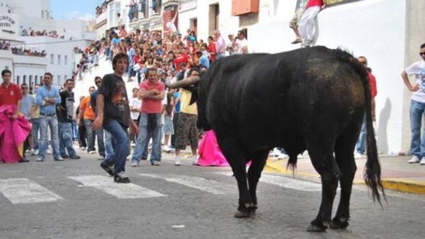Imagen de archivo del Toro del Aleluya en Arcos.