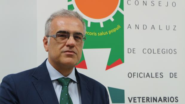 Fidel Astudillo Navarro, presidente del Consejo Andaluz de Colegios Oficiales de Veterinarios.