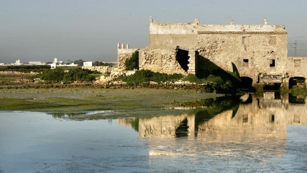 El molino del Río Arillo está en un estado de deterioro que requiere actuaciones para recuperarlo.