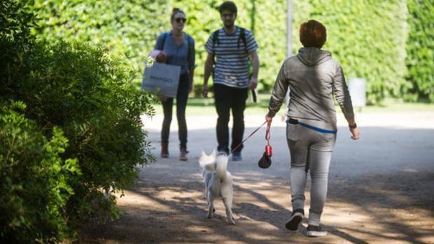 La Policía Local de Isla Mayor sanciona a los padres de una menor cuando ésta paseaba a su perro sin la correa
