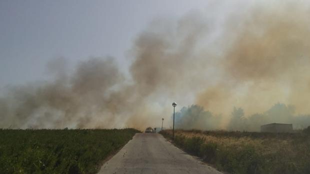El incendio está controlado pero 28 personas han sido desalojadas