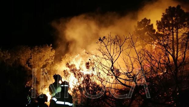 La actuación nocturna en el incendio de Tarifa