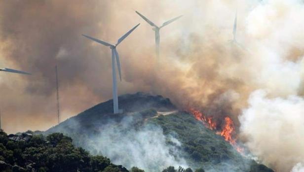 A finales de julio también hubo un incendio en La Hoya (Tarifa).