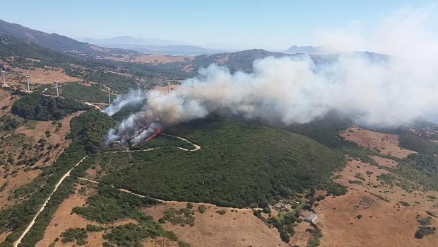 El pasado mes de julio también se registró un incendio en La Hoya (Tarifa).