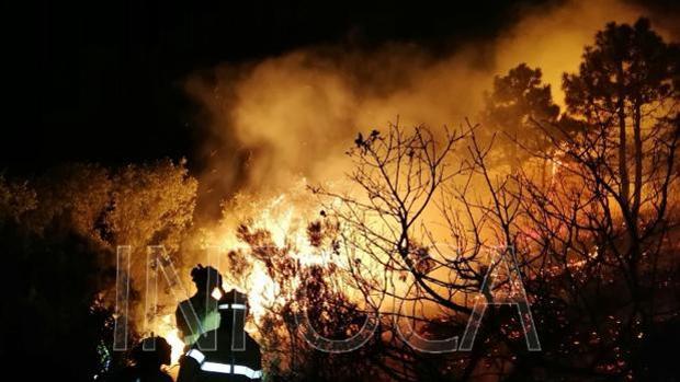 Labor de los trabajadores del Plan Infoca para extinguir el incendio de Tarifa.