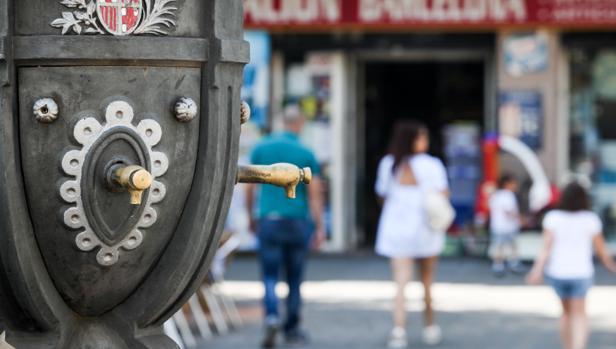 El autor de los delitos fue detenido en la avenida de Barcelona de Córdoba