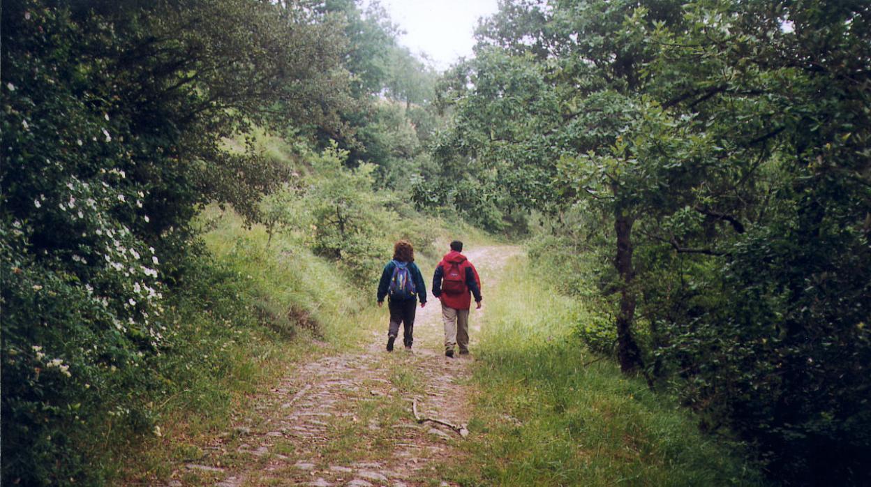 rutas senderismo cadiz ninos
