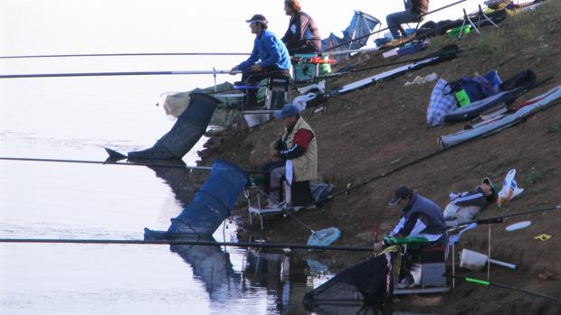 El concurso de pesca se traslada a La Puebla de los Infantes por el mal estado del río Genil
