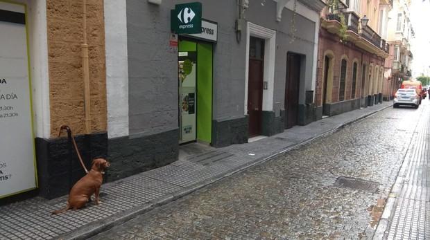 Imagen de la puerta del establecimiento en la calle Buenos Aires