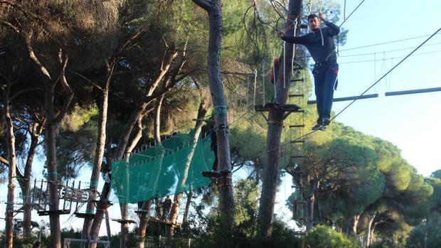 Los bosques suspendidos son una de las grandes atracciones para los amantes de las aventurtas, ocio y deporte