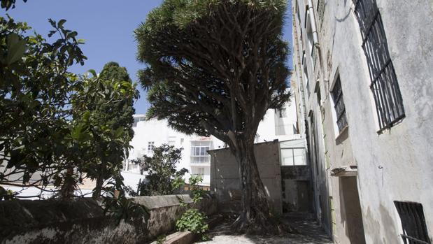 El patio del Hospital de Mujeres, objeto de desarrollo por parte del PGOU.