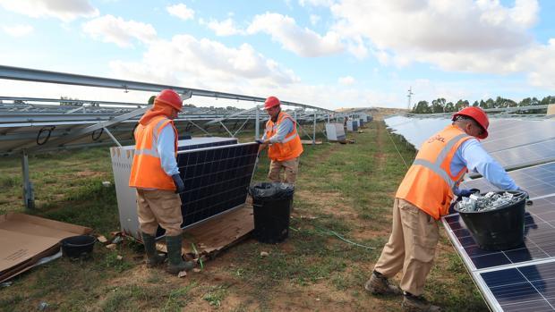 La planta solar se encuentra repartida entre los términos municipales de Alcalá y Utrera