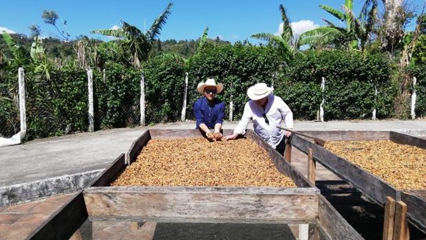 El utrerano Diego Panal ha buscado en Centroamérica los mejores granos de café del mundo