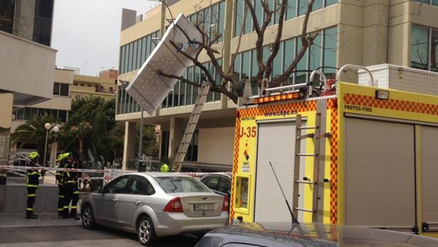 El panel, incrustado en el árbol, junto a la sede de Aguas de Cádiz.