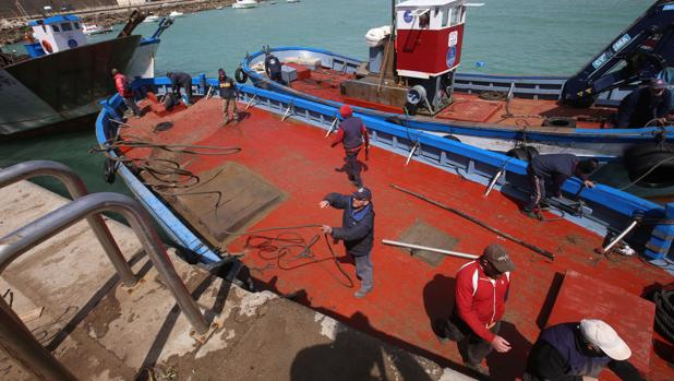Barcos de la almadraba de Conil a su regreso a puerto tras colocar anclas y cables en alta mar