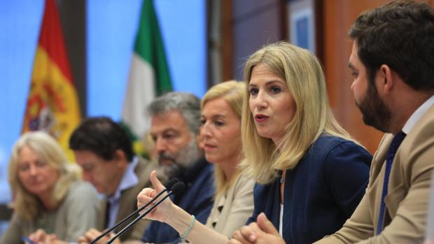 Ana Mestre, junto al resto de delegados, durante la explicación de las inversiones que tocan a Cádiz