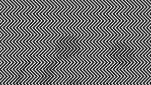 ¿Puedes descubrir qué hay oculto en esta imagen en blanco y negro?
