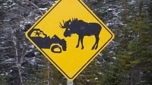 Las siete señales más extrañas que puedes encontrarte en la carretera