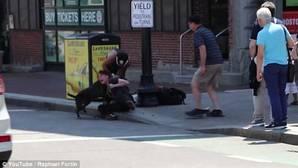 YouTube: Una mujer, herida por salvar a su perro beagle del ataque de un pitbull