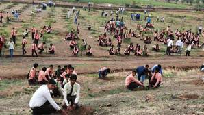 Voluntarios han plantado 66 millones de árboles en 12 horas en India