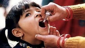 Diseñada una vacuna frente a la polio idónea para la post-erradicación de la enfermedad