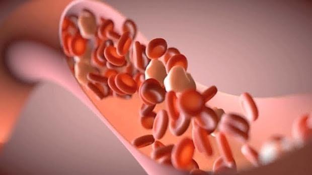 Las HDL inducen efectos tanto antiinflamatorios como proinflamatorios