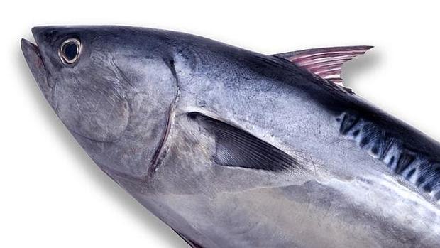 El pescado azul es rico en ácidos grasos omega-3