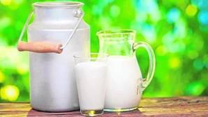 Los distintos tipos de leche de origen no vacuno amenazan a la leche tradicional