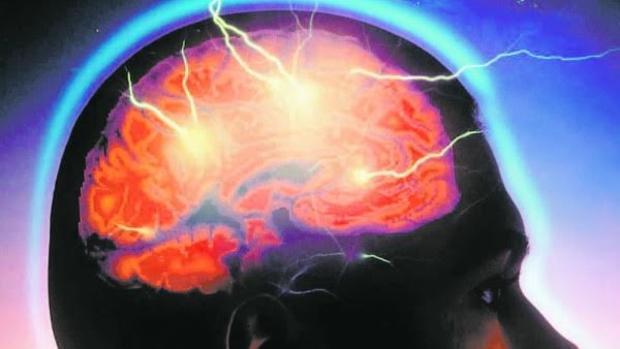 El rendimiento cognitivo no se ve afectado durante el periodo