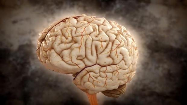 Las enfermedades neurovasculares son una de las primeras de mortalidad