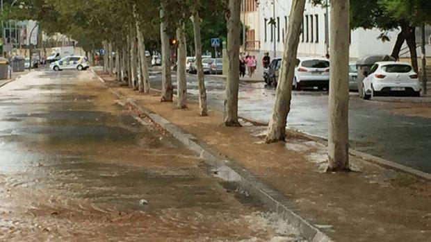 La avenida Ciudad Jardín inundada